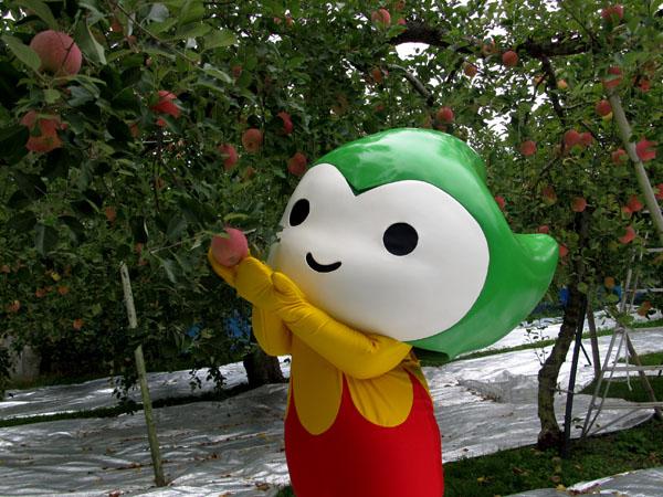阿東のおいしいリンゴを取材してきたよ♪
