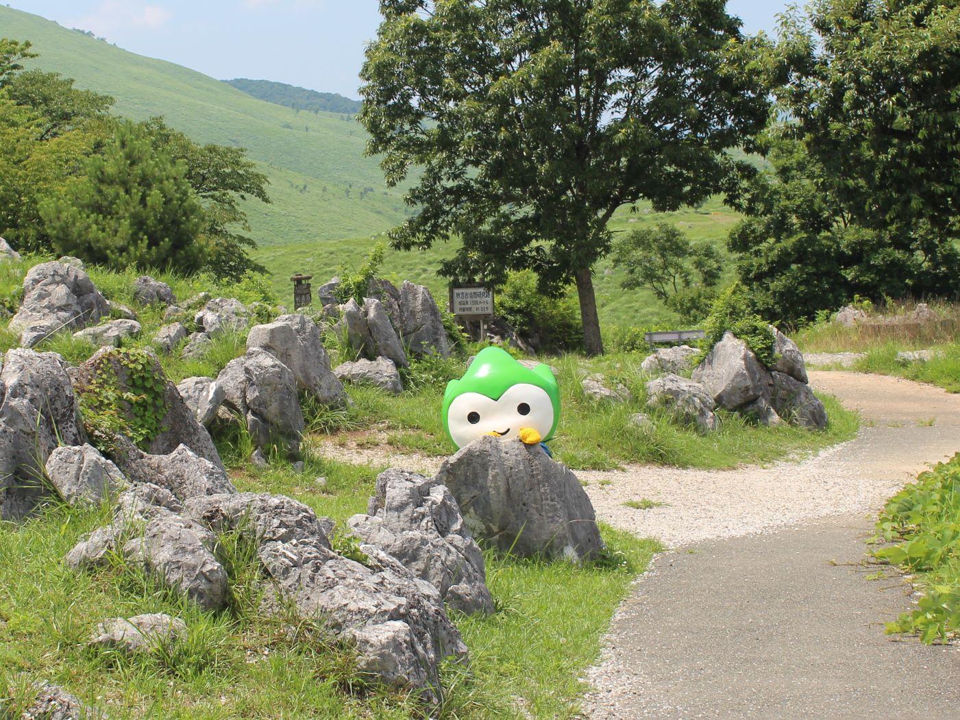 美祢市の夏のお出かけにピッタリな観光スポットに行ってきたよ☆彡